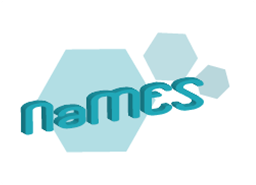 The NaMES' logo - Designed by Nadine Briemle (TUM)